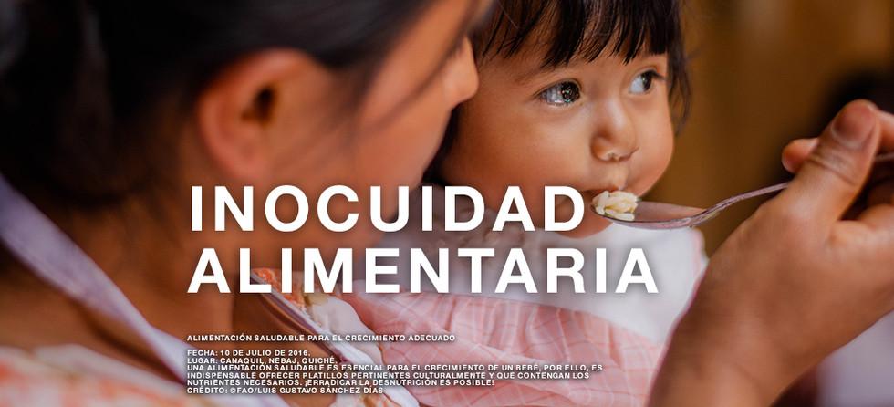 Inocuidad alimentaria.jpg