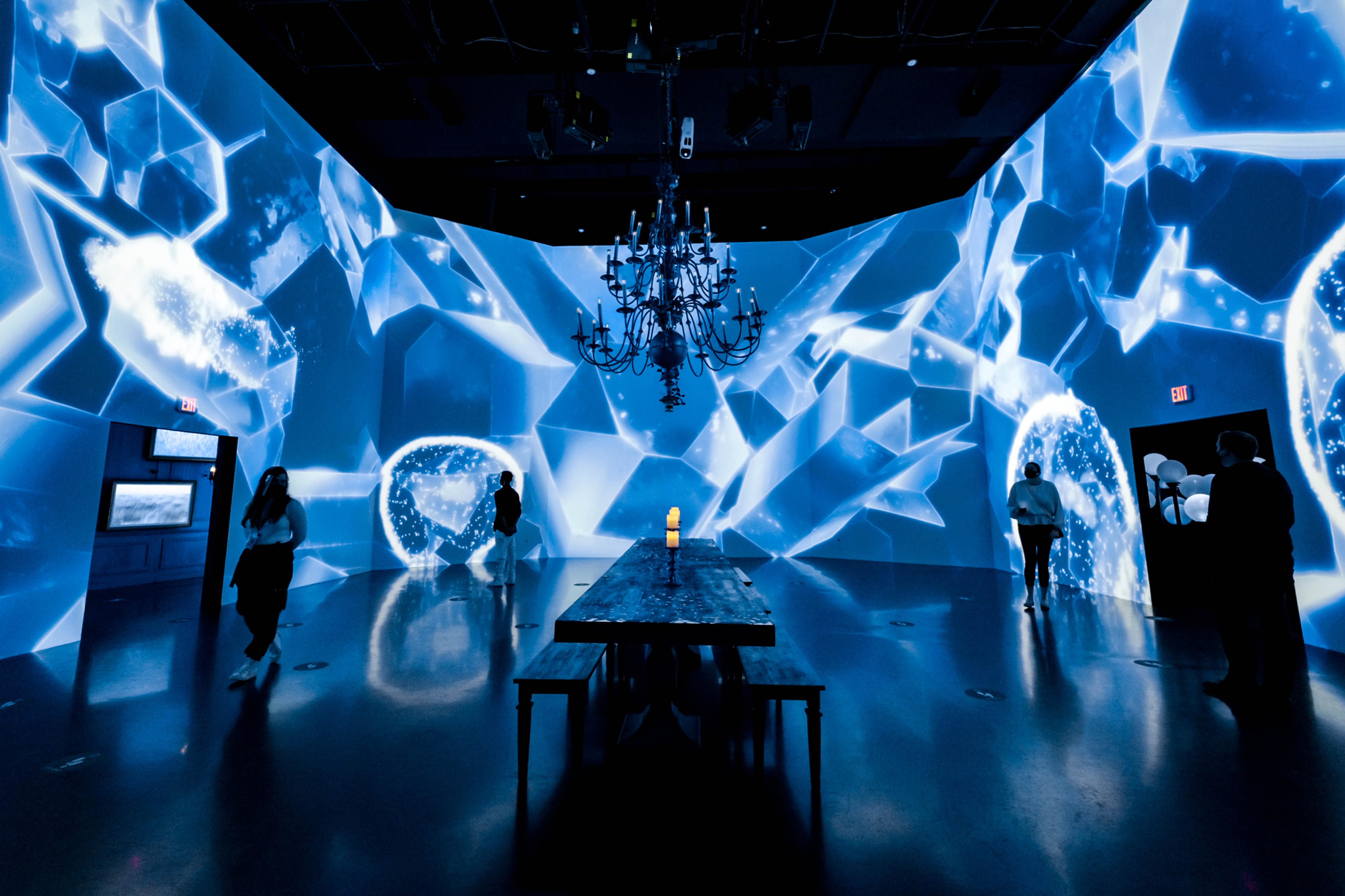 ARTECHOUSE   New York, NY