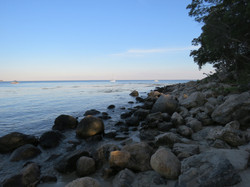 Rocks and the Coast