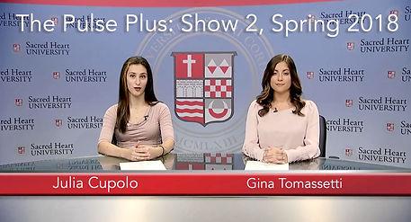 pulse plus 2 website jpeg.jpg