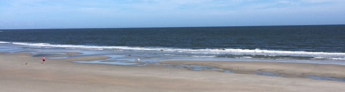 Pawleys beach.JPG