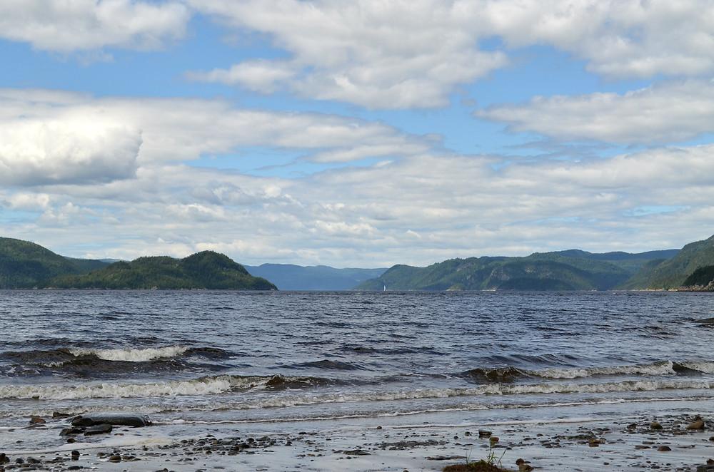 Baie Ste-Marguerite, Produits Artémis