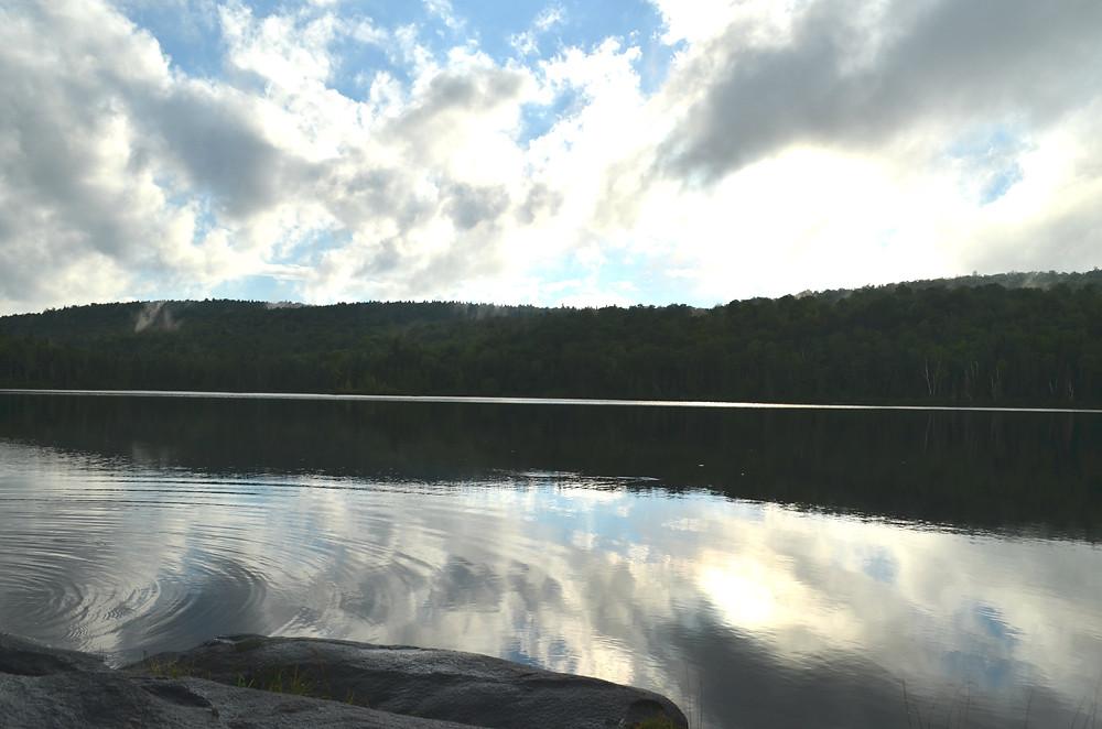 Lac Bouchard, Produits Artémis