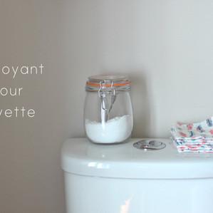 Poudre nettoyante pour toilette scintillante