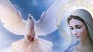 Czas Ducha Świętego i Jego Oblubienicy. Z pism ks. Gobbi