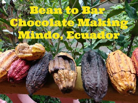 Bean to Bar...How Do We Transform Cacao Into Chocolate?