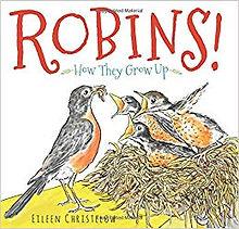 Robins!.jpg