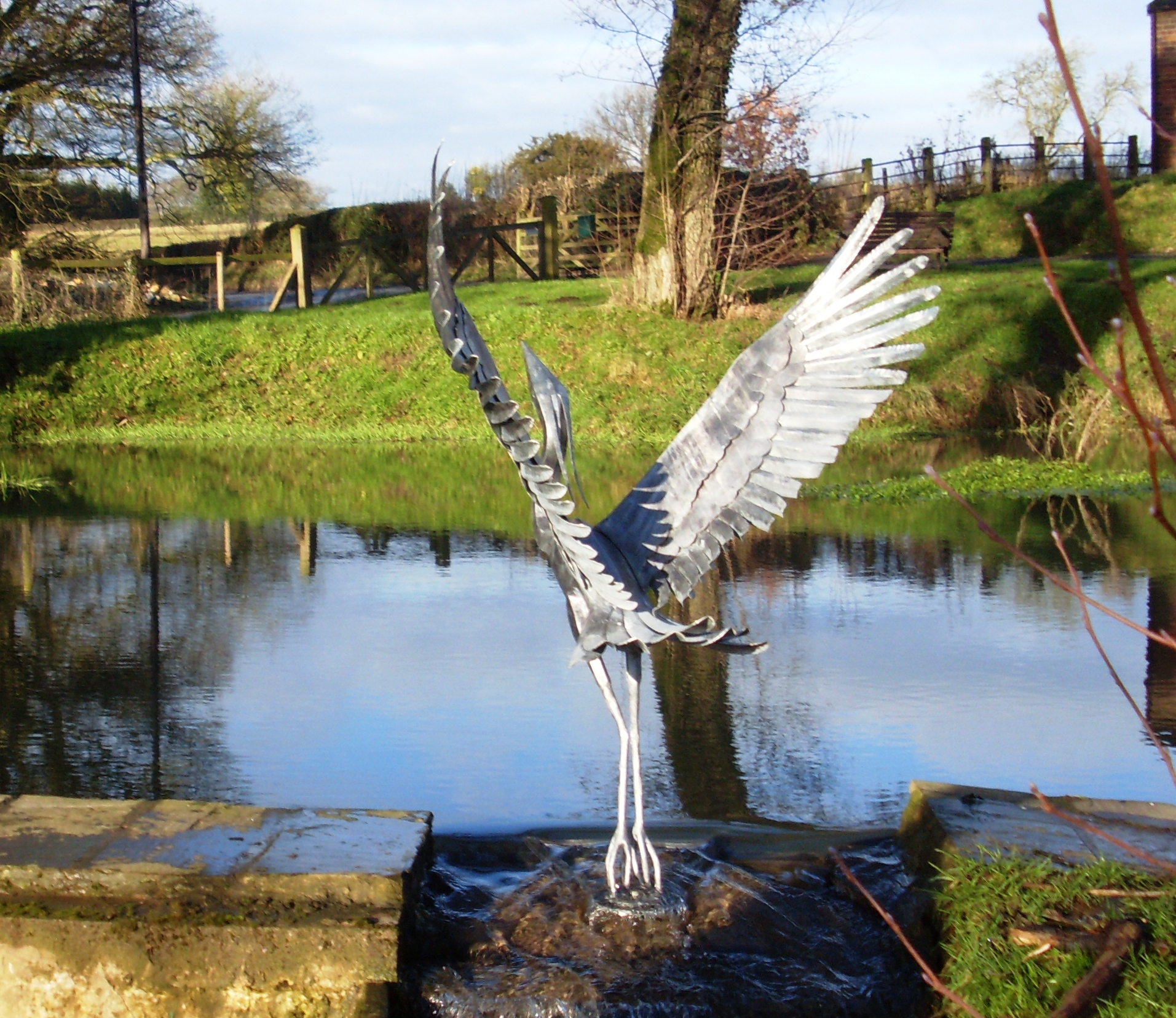 heron on pond 4.jpg