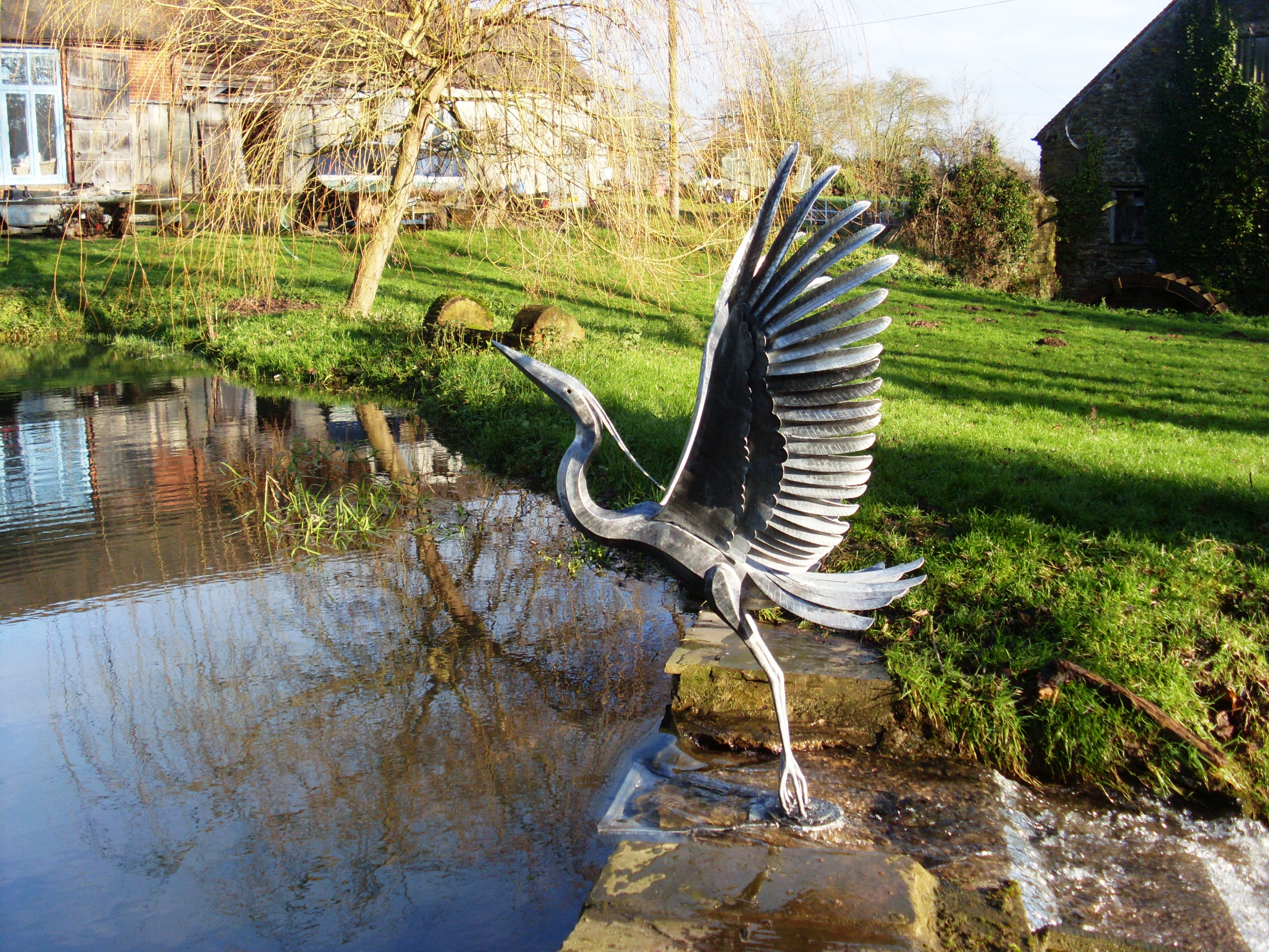 heron on pond 2.jpg