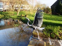heron on pond 2.jpg