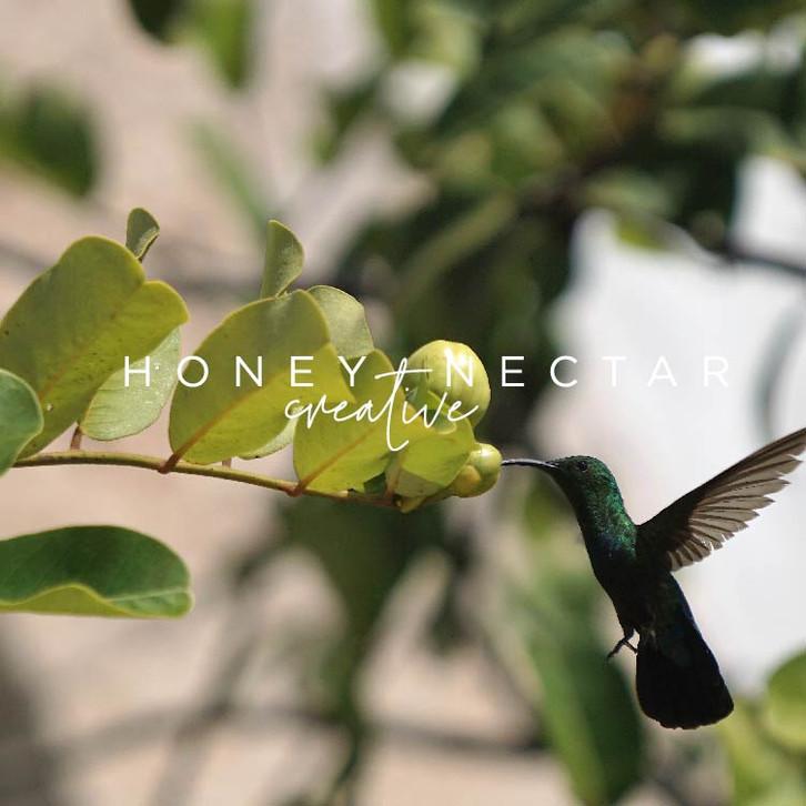 Honey + Nectar Creative