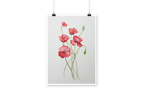 Poppy Appeal Signed Numbered Print