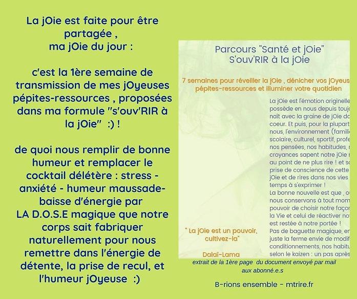 extrait_du_doc_joyeuses_pépites_resssou