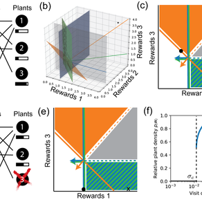 Niche theory for mutualism: A graphical approach to plant-pollinator network dynamics