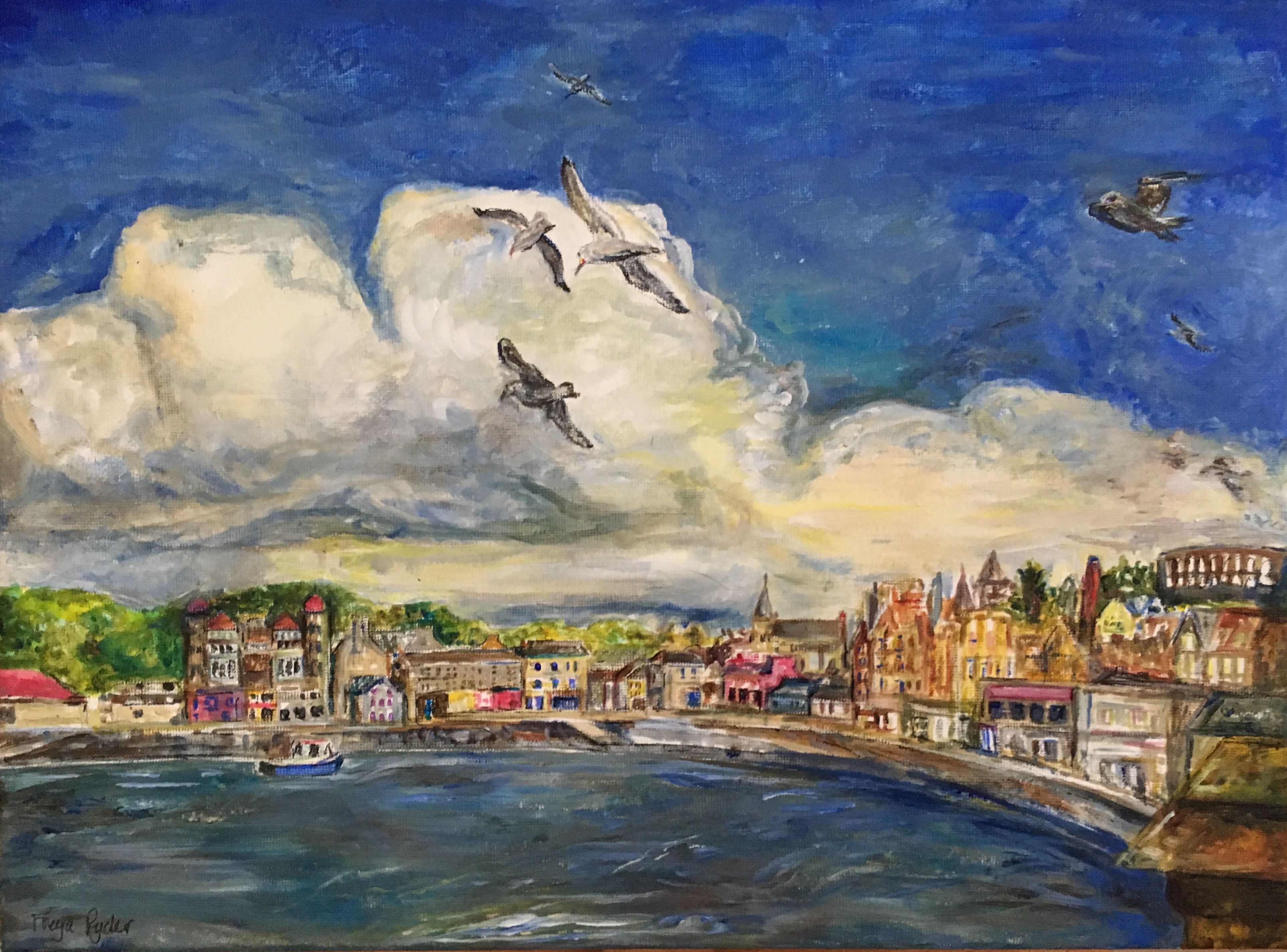In free flight, by Freya Ryder