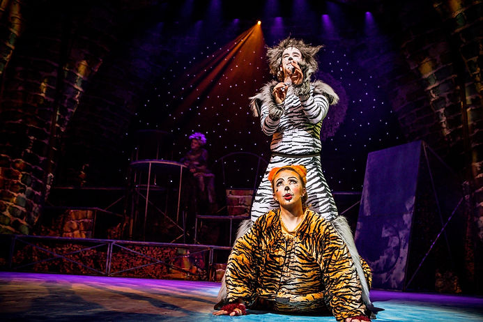Cats directed by Ali Kirkham