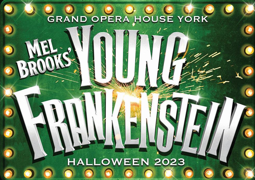 Pick Me Up: Young Frankenstein