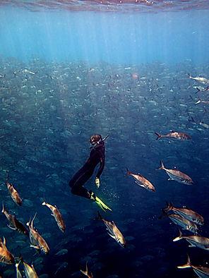 snorkeling Cartagena Colombia