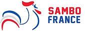banniere-logo-cfs.jpg