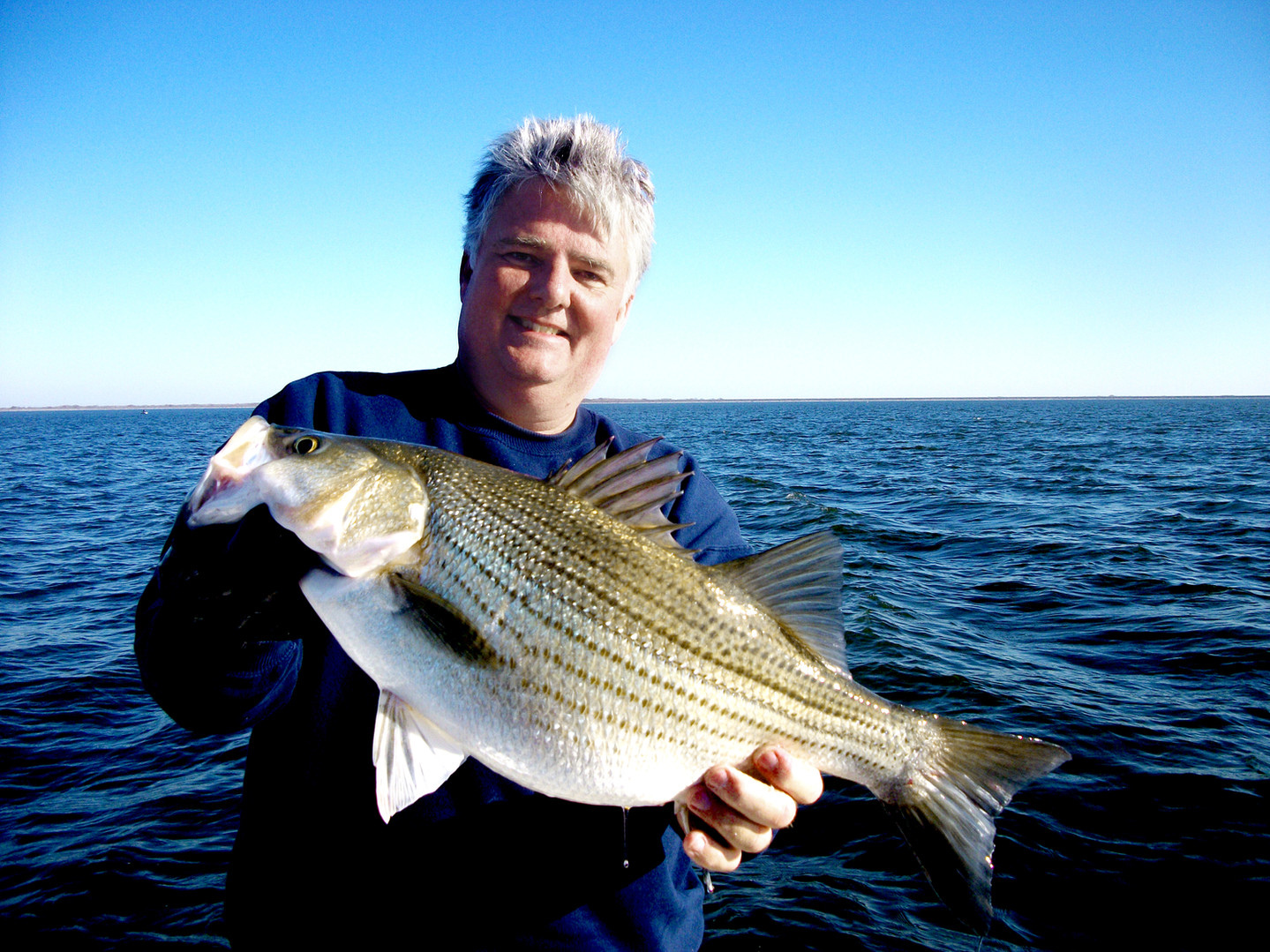 Hybrid Striped Bass (Whiterock Bass) Plnor Catch and Release World Record