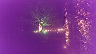 Party lightin hire, uplighters, generator hire.