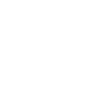 Avi Diamond Logo White.png