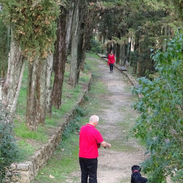 Volterra, Italy 2017.JPG