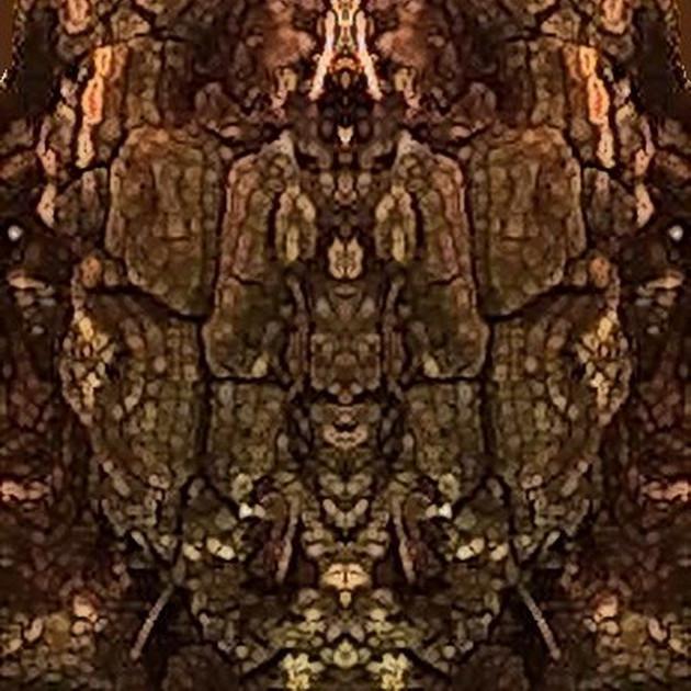 Tree Face 2_900.jpg