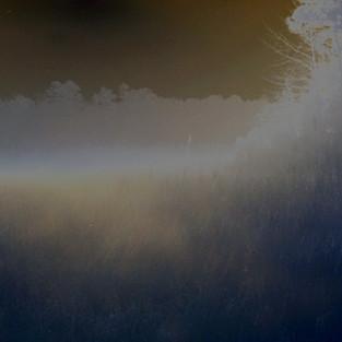 BroadCreek Marsh Fog