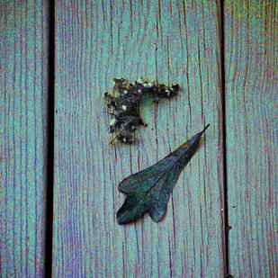Oak Leaf and friends_2010_900.png