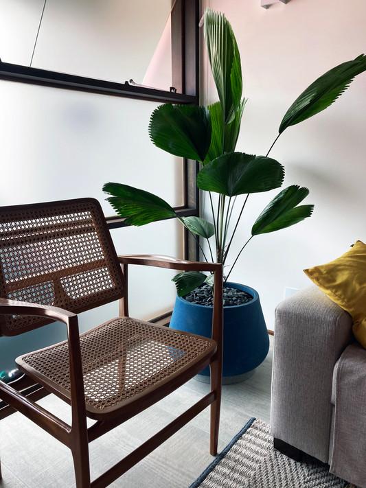 Projeto indoor paiagismo