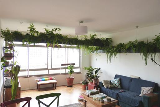 Plantscaping Apartamento SP