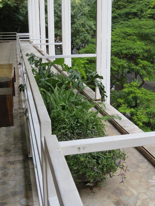 Plantscaping Galeria Metrópole