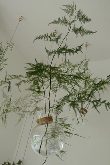 Plantscaping _ Móbile de Plantas
