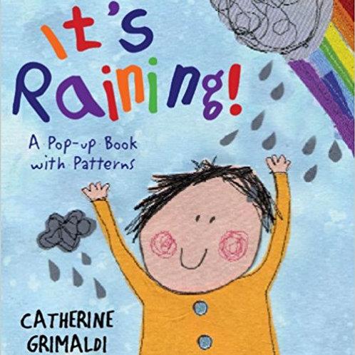 It's Raining Pop Up Book