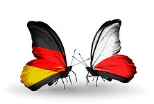 bigstock-Two-Butterflies-With-Flags-On--