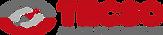 Logo Tecso.png