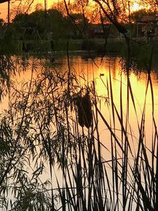 Brauning_Lake_RV_Resort 2019-04 Photo 23
