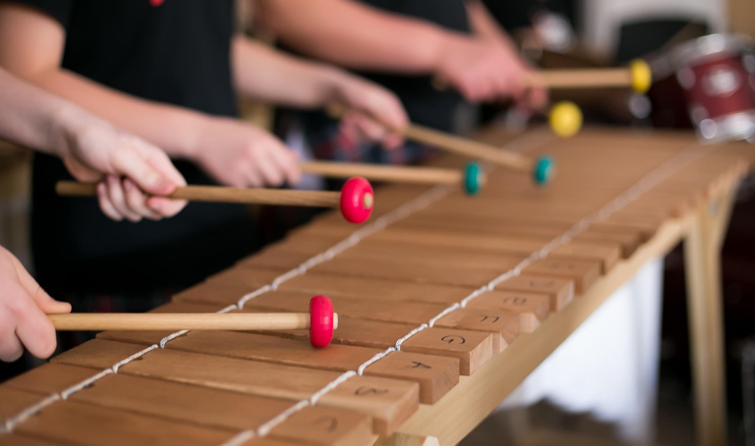 Our main instrument is the marimba