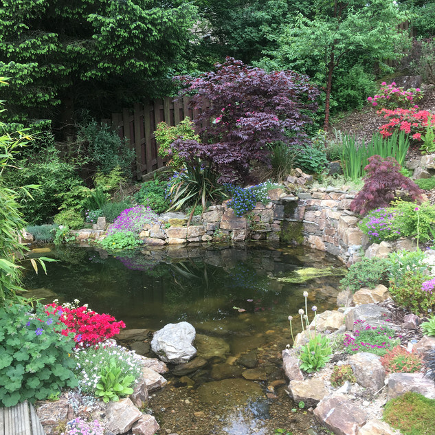 View of our pond