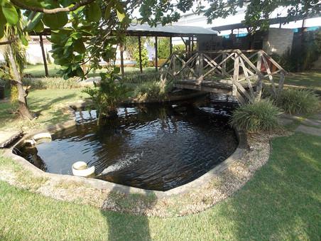 Lago do Cerimonial da Barra - parte 3