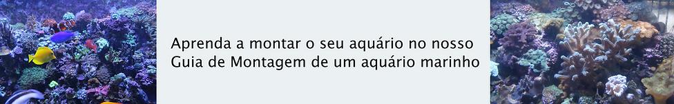 guiamarinho.png