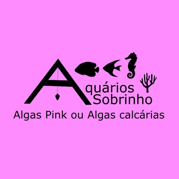 alga calcária pink coralínia aquário marinho