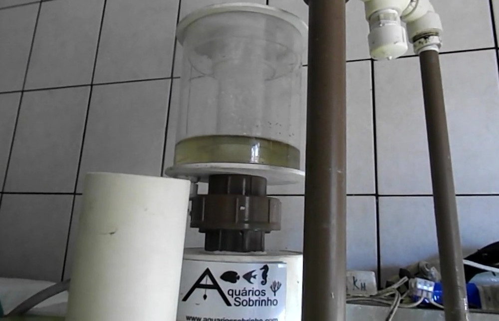skimmer água doce filtragem aquário