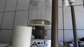 Skimmer para aquário de água doce da Aquários Sobrinho - Funcionamento e teste com espirulina