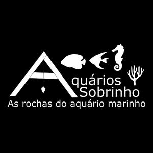 rocha aquário marinho