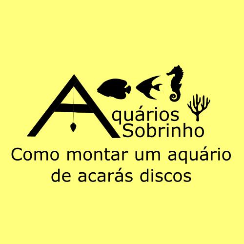 montar aquário acará disco