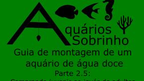 Guia de montagem de um aquário de água doce - Parte 2.5: Comprando juvenis ao invés de adultos