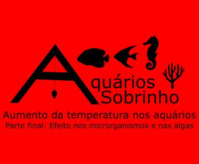 Aumento da temperatura nos aquários: Parte final - Efeito nos microrganismos e nas algas