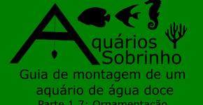 Guia de montagem de um aquário de água doce - parte 1.7: Ornamentação